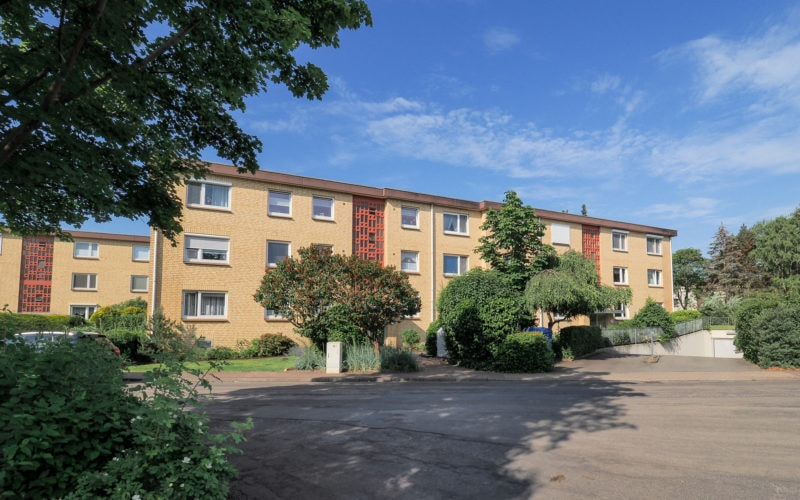 - TEAMMAKLER Immobilien 51653